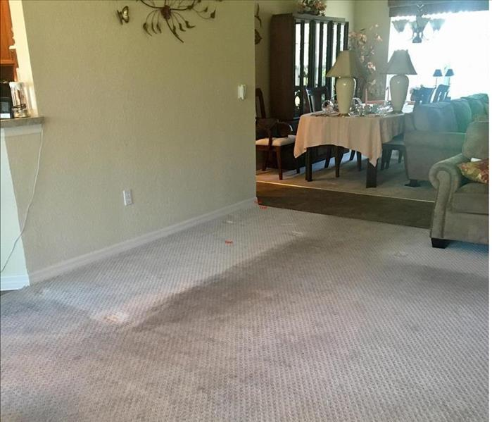 soiled carpet with clean area