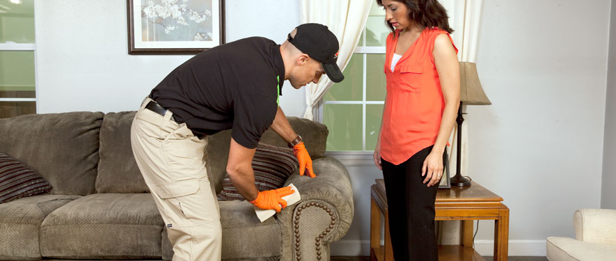 Oceanside, NY carpet upholstery cleaning